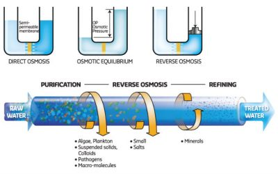 What Is Reverse Osmosis